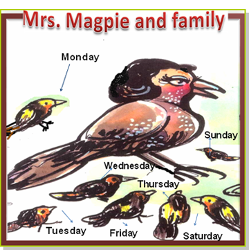 Mrs Magpie and family