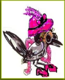Cuckoo Cool